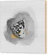 Dalmatian Molly No 01 Wood Print