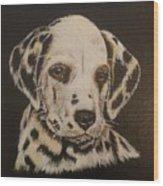 Dalmation Wood Print