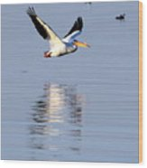 Salton Sea Flight Photograph Wood Print
