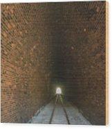 Dalveen Railway Tunnel 1880 Wood Print