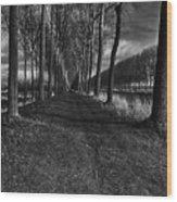 Damme, Belgium Wood Print