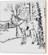 Dan And Horse 11 Wood Print