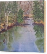 Dan S Pond Wood Print