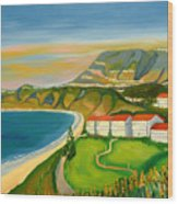 Dana Point Wood Print
