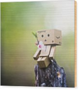 Danbo - Flower Wood Print by Adnan Bhatti