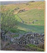 Danby Dale Countryside Wood Print