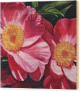 Dance Of The Peonies Wood Print
