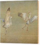 Dance Ritual II, Sandhill Cranes Wood Print