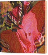 Dancer In Reds Wood Print
