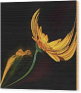Dancing Flower Wood Print