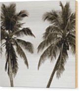 Dancing Palms Wood Print