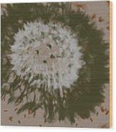 Dandelion Emu 3 Wood Print