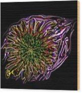 Dandelion Eye In Pink Wood Print