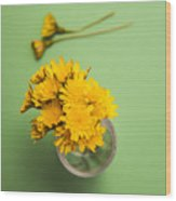 Dandelion Flower Clippings Wood Print