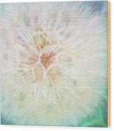 Dandelion In Winter Wood Print