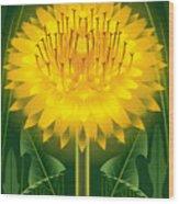Dandelion Lion's Tooth Print Wood Print