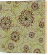 Dandelion Nosegay Wood Print