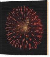 Dandelion On Fire Wood Print