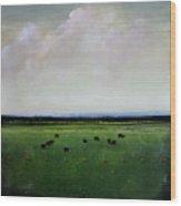 Dandelion Pastures Wood Print by Toni Grote