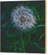 Dandelion Seeds 2 Wood Print