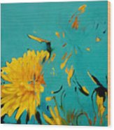 Dandelion Summer Wood Print