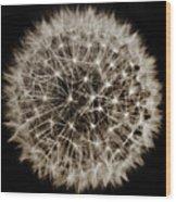Dandelion Sun Wood Print