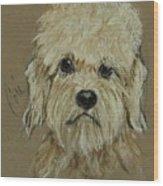 Dandie Wood Print