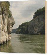Danebu Gorge  Wood Print