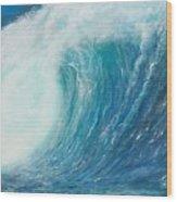 Danger No Surfing Wood Print