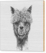 Daniel Wood Print