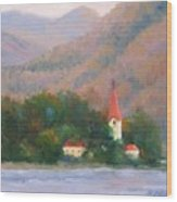Danube Autumn Wood Print