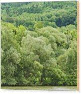 Danube Green Wood Print