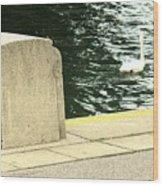 Danube River Swan Wood Print