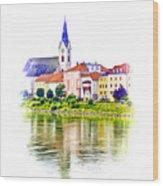 Danube Village Wood Print