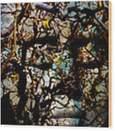 Daphne Consent Wood Print