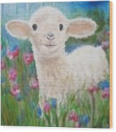 Flying Lamb Productions     Daphne Star In The Tall Grass Wood Print