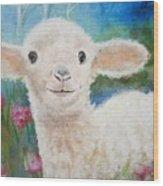 Daphne Star's Ears.   Flying Lamb Productions  Wood Print