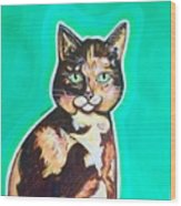 Daphne The Calico Cat Wood Print