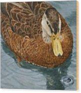 Daphne Waddell Wood Print