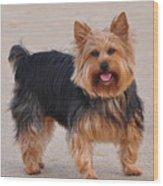 Dapper Dog Wood Print