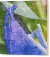 Dappled Petals Wood Print
