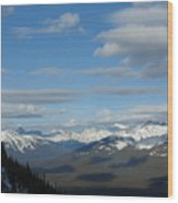 Dappled Slopes Wood Print