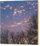 Dappled Sunset-1548 Wood Print