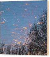Dappled Sunset-1565 Wood Print