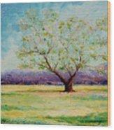 Dapples Apple Tree II Wood Print