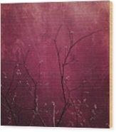Daring Pink Wood Print