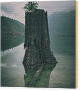 Dark And Gloomy Wood Print