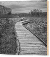 Dark Appalachian Trail Wood Print