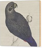 Dark Blue Parrot Wood Print