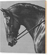 Dark Brown Dressage Horse Black And White Wood Print